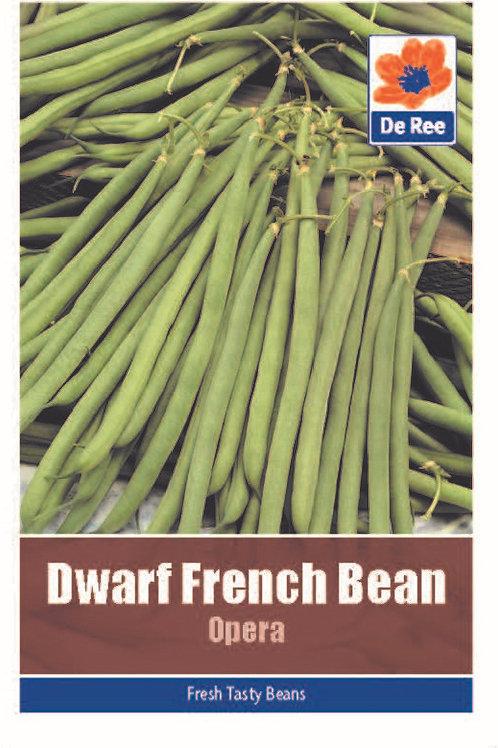 Dwarf French Bean Opera (De Ree Seeds)