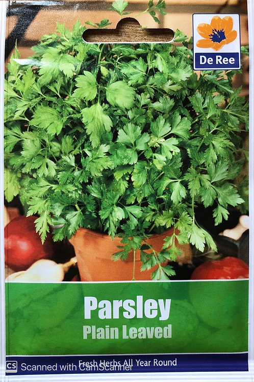 Parsley Plain Leaved (De Ree Seeds)