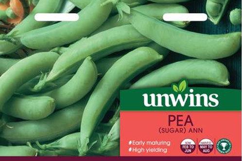 Unwins Pea (Sugar) Ann - Approx 260 Seeds