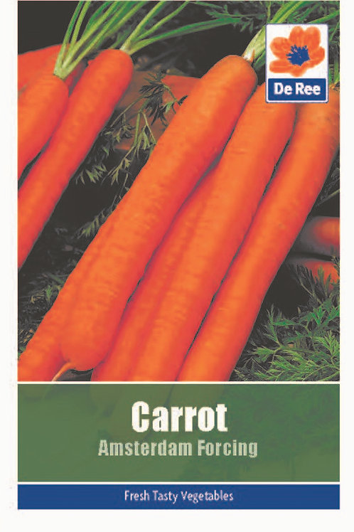 Carrot Amsterdam Forcing (De Ree Seeds)