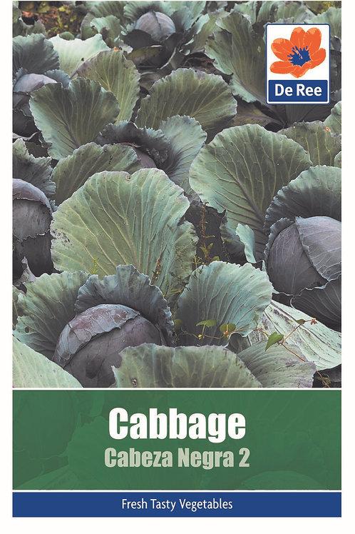 Cabbage Cabeza Negra 2 (De Ree Seeds)