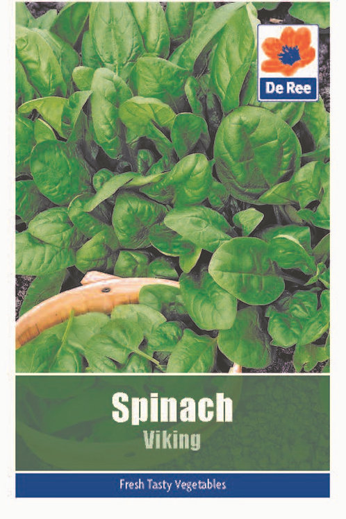 Spinach Viking (De Ree Seeds)
