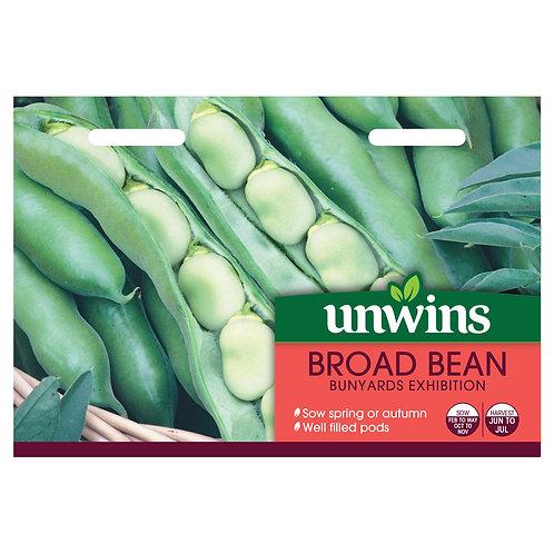 Unwins Broad Bean Bunyards Exhibition - Approx 40 Seeds