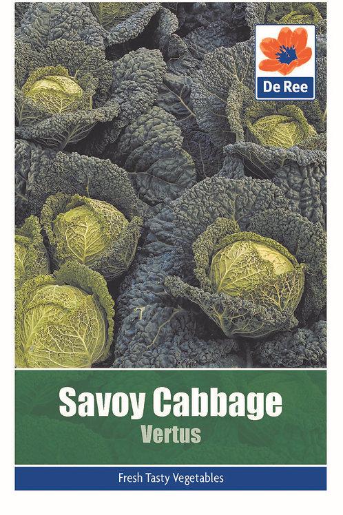 Savoy Cabbage Vertus (De Ree Seeds)