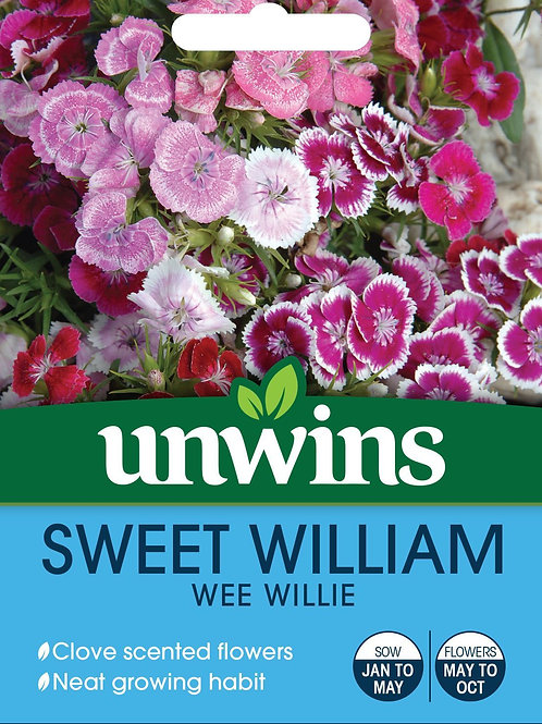 Unwins Sweet William Wee Willie - Approx 500 Seeds