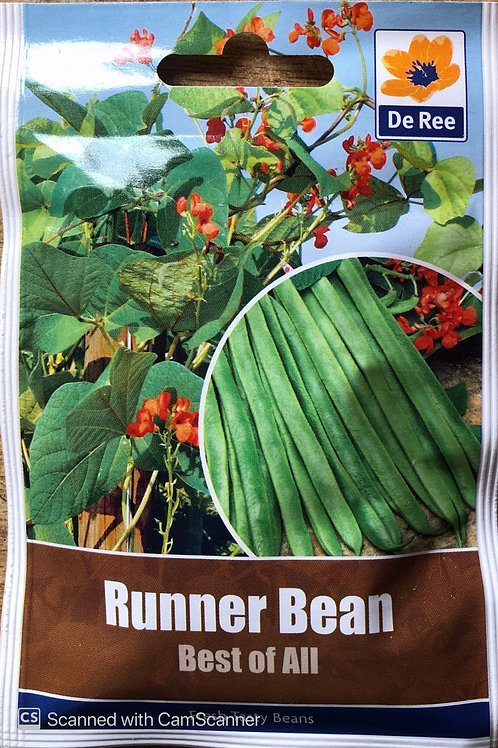 Runner Bean Best Of All (De Ree Seeds)