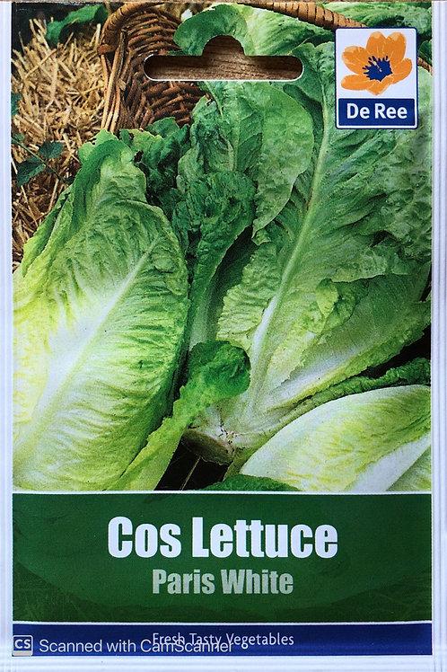 Cos Lettuce Paris White (De Ree Seeds)