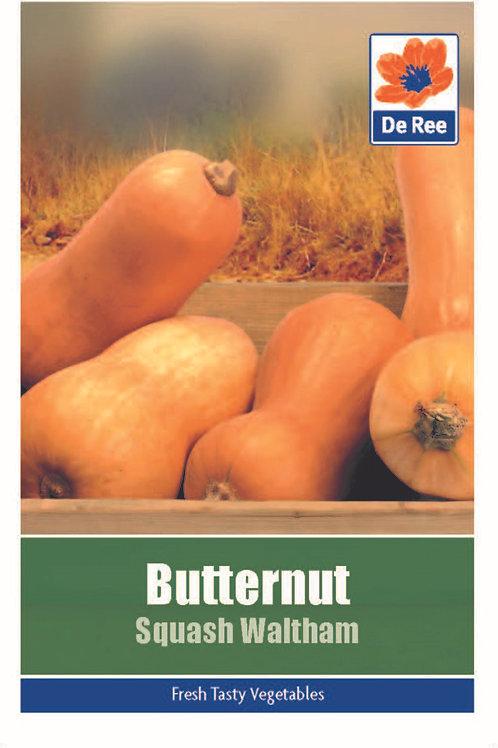 Butternut Squash Waltham (De Ree Seeds)