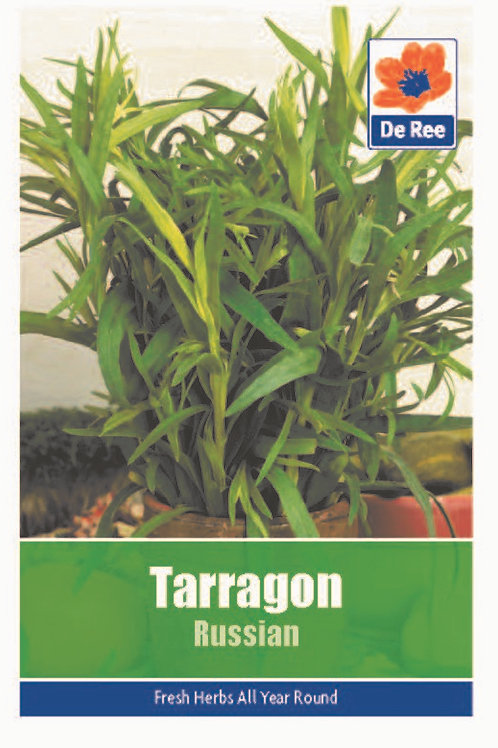 De Ree Tarragon Russian Seeds