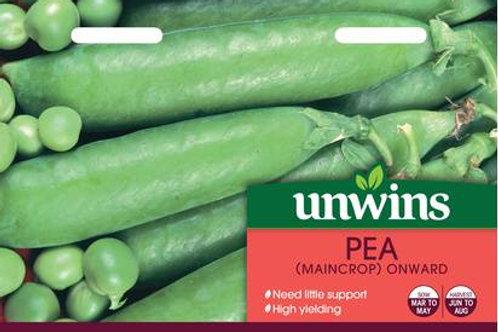 Unwins Pea (Maincrop) Onward - Approx 250 Seeds