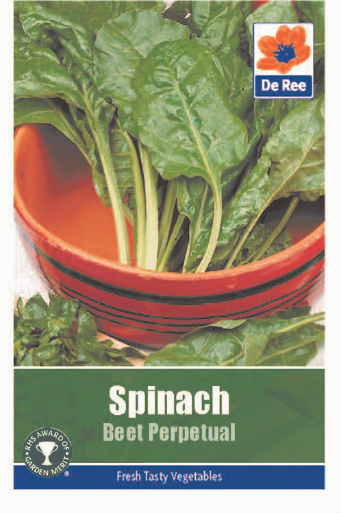 Spinach Beet Perpetual (De Ree Seeds)