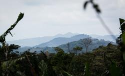 Nicaragua 494-236