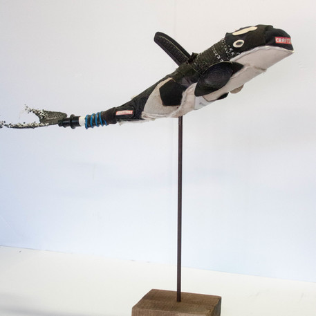 """""""Sporty""""Orca"""