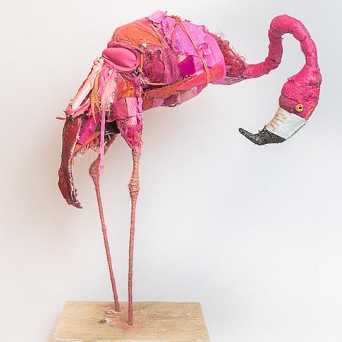 """Pink Flamingo"""