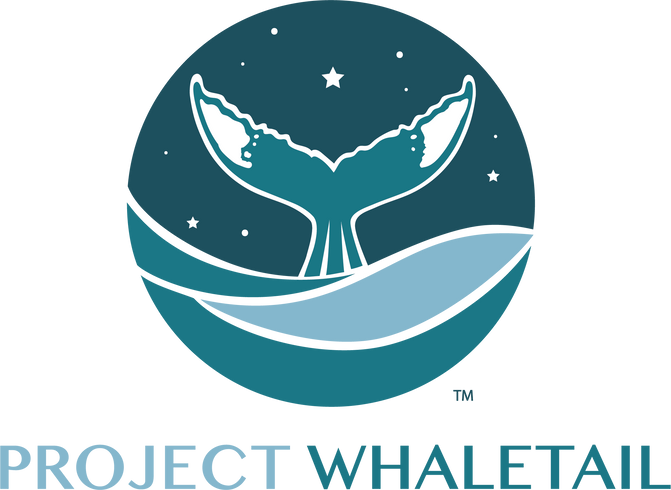 What is Project Whale Tail?