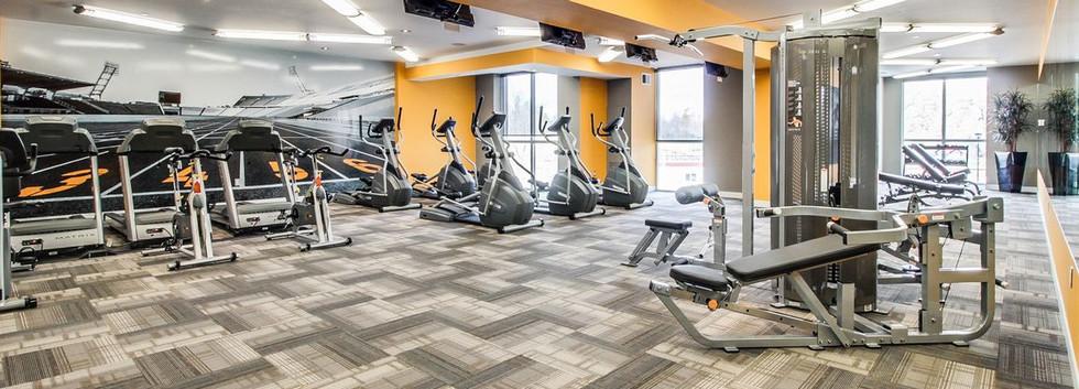 Onyx- Fitness Rm