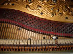 Piano Inside 1