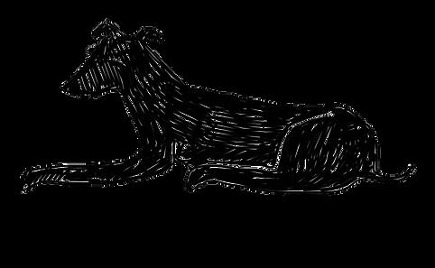 Logo LP preto (transparente).png