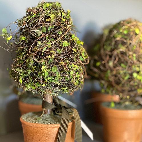 Mini-Vaso com topiaria