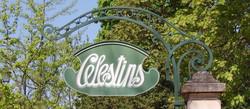 Vichy-source-Célestins