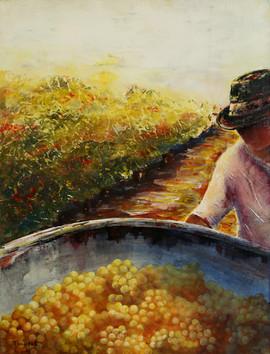 Ginette Mango France