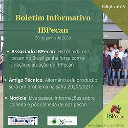 Boletim Informativo 08-min.png