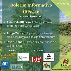 Boletim Informativo 12.png