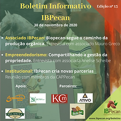Boletim Informativo 13.png