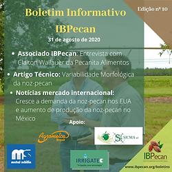 Boletim Informativo 10-min.png