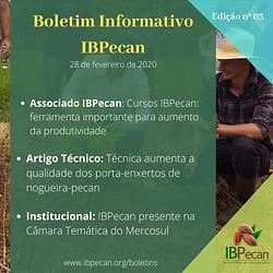 Boletim Informativo 03-min.png