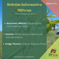 Boletim Informativo 01-min.png