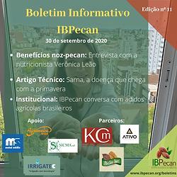 Boletim Informativo 11.png