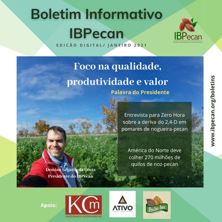 Capa boletim IBPecan 012021.png