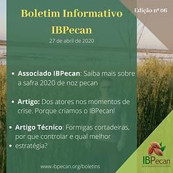 Boletim Informativo 06-min.png
