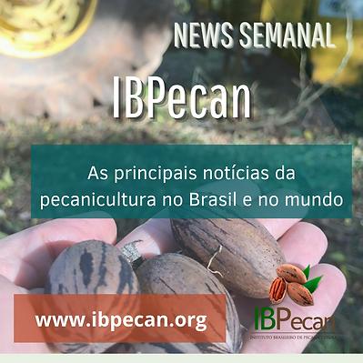 News semanal para site (1).png