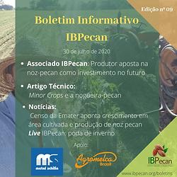 Boletim Informativo 09 (1)-min.png