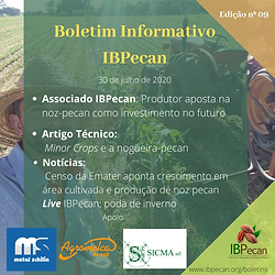 Boletim Informativo 09.png