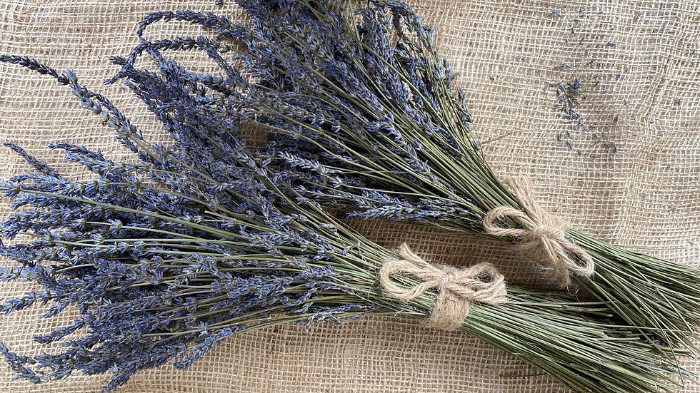 LH - Dried Lavender Bunch