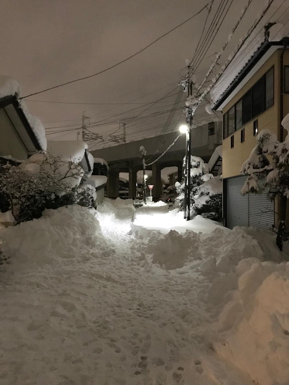 新潟市豪雪