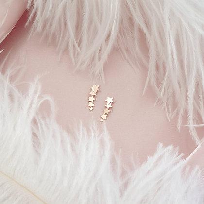 Rose Gold Plated Star Earrings