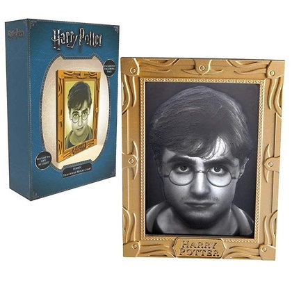 HARRY POTTER - Lampe d'Ambiance Holopane Harry