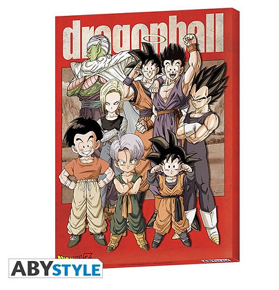 DRAGON BALL - Toile Groupe (30x40)