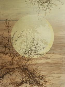 seminis lunae -II-