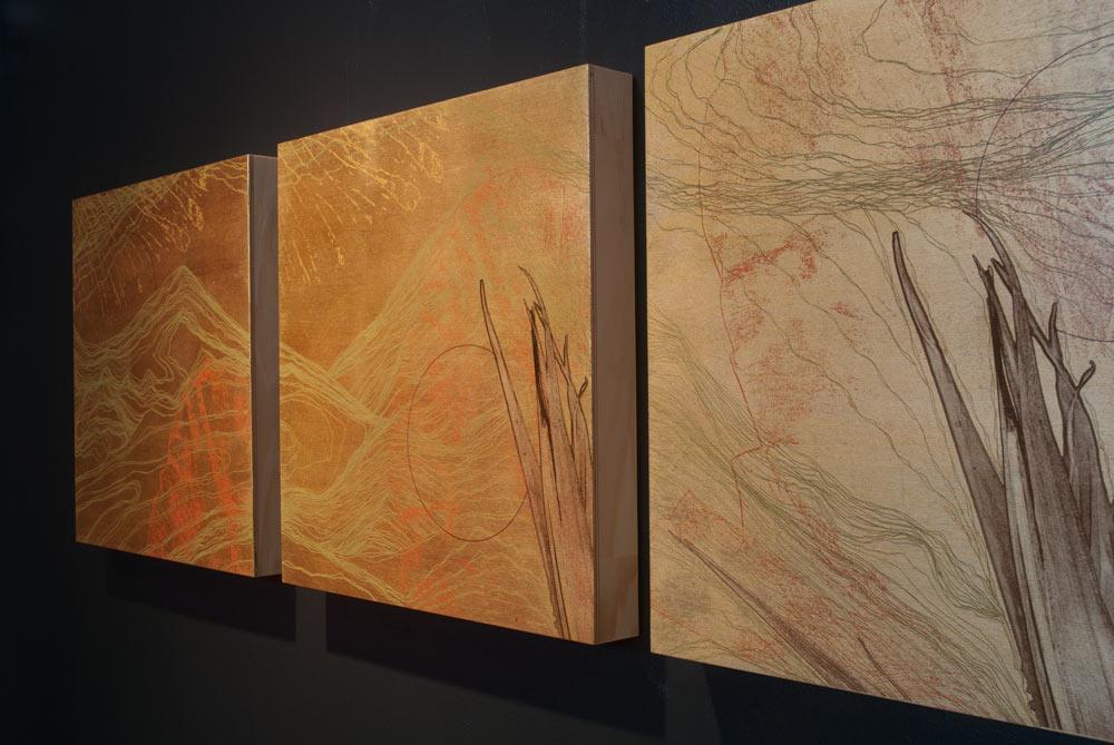 Biome -vue de l'exposition-