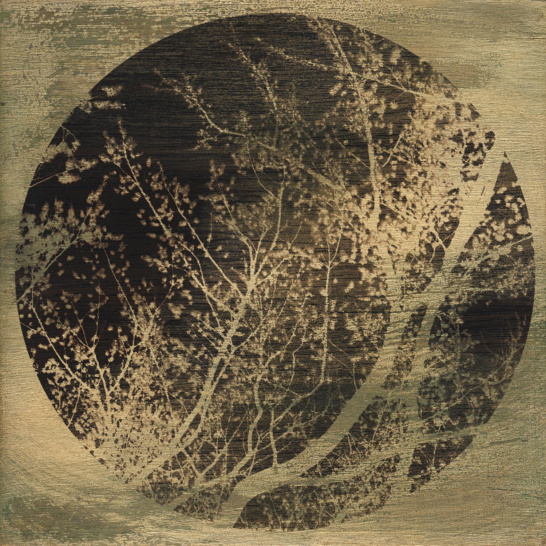 Nova luna -VIII-