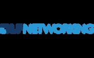 logo_lfn-300x184.png