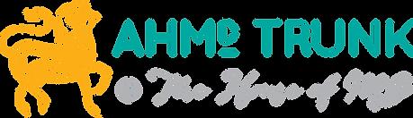 AMD Trunk _ HMG_stack.png