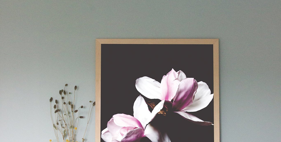 Pink Magnolia - Just SouthWest A3 Print