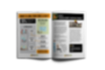 example of color pages standout handout with images and infographics
