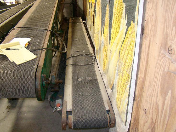 Bag Conveyor